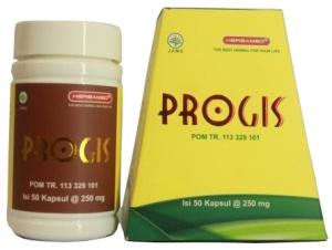 3385483_progis